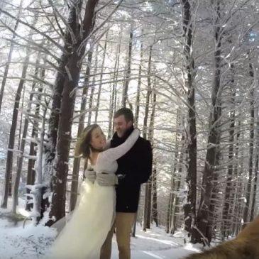 Leur mariage filmé par leur chien